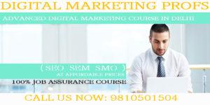 Digital Marketing Course Rohini Delhi